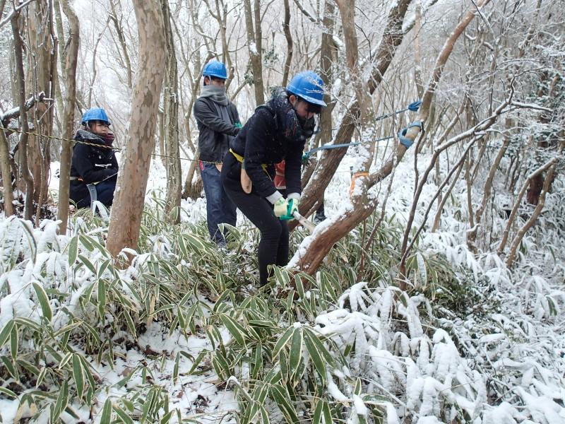 48-③雪の中でアセビノ伐採にチャレンジP1150030